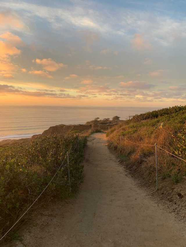 The trail at Torrey Pines
