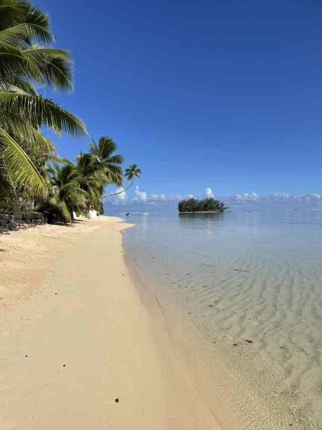 beach in moorea with white sand