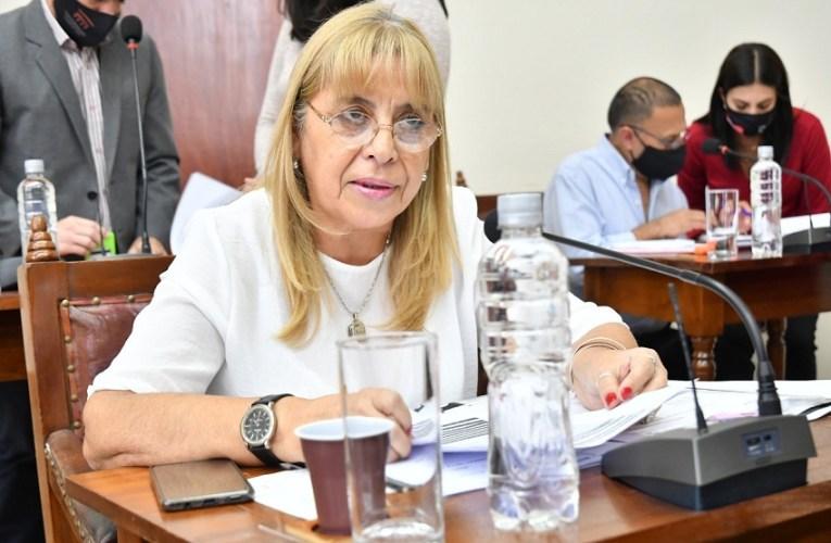 FALTA INFORMACIÓN SOBRE LA GEOMEMBRANA PARA EL VERTEDERO SAN JAVIER Así lo hace notar la concejala del Frente de Todos en Salta, Laura García.-
