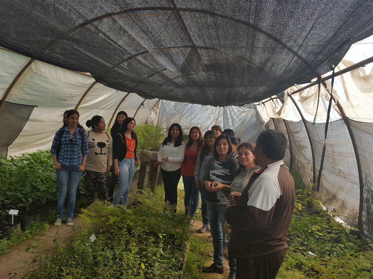 Voluntarios de entidades sociales crearán huertas comunitarias en los barrios