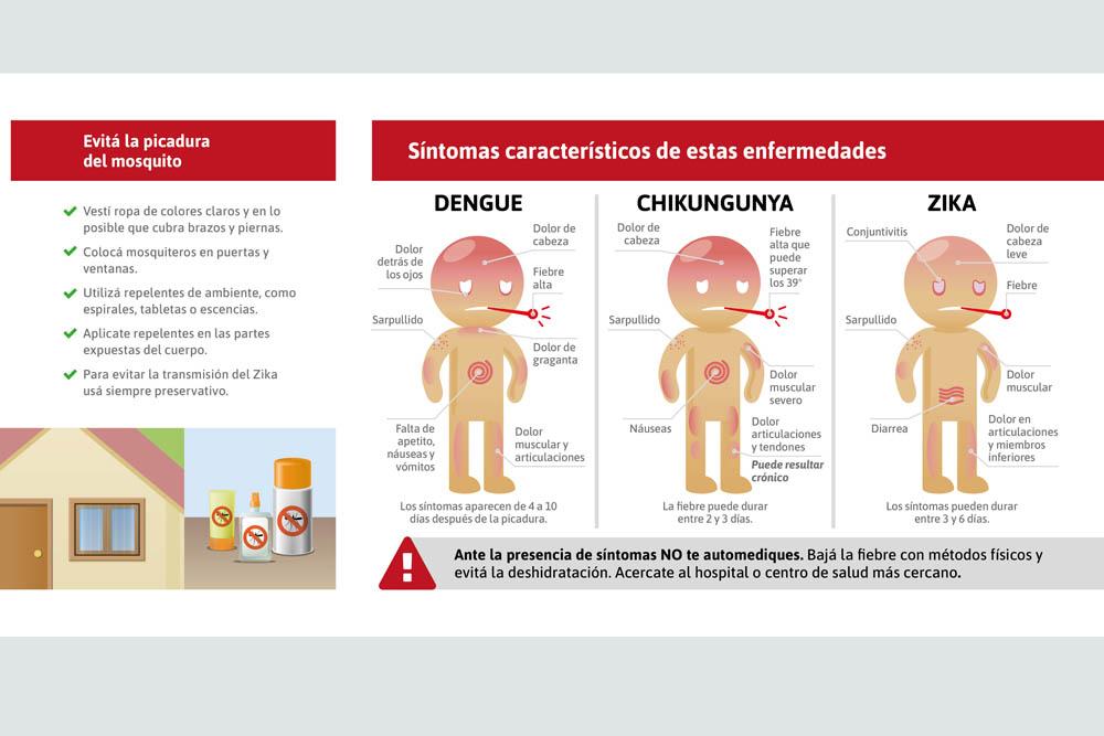 A la fecha no se reportaron en Salta casos de dengue, zika o chikungunya