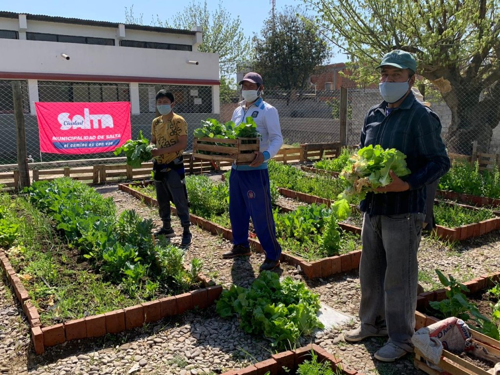 Vecinos realizaron la primera cosecha de la huerta del CIC de Constitución