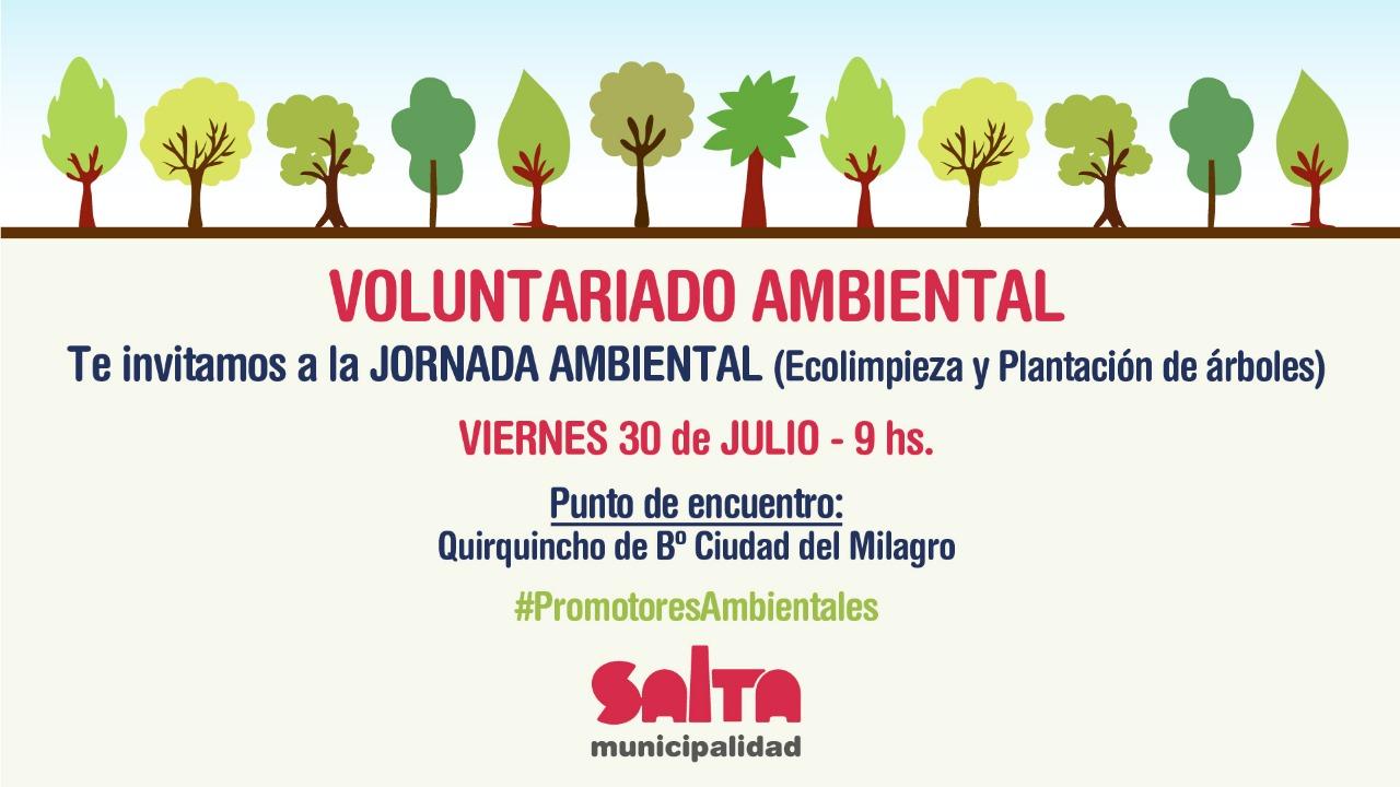 Voluntarios realizarán una jornada de ecolimpieza y plantación de árboles