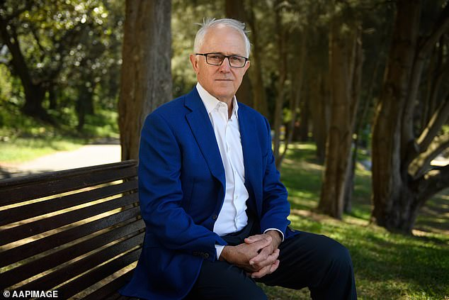 Malcolm Turnbull has been dumped from his new job as the NSW government's climate change tsar