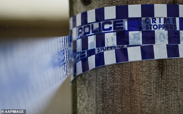Police said emergency services were called to the Pacific Highway north of Coffs Harbour at Moonee Beach around 1.20am on Wednesday, following reports a man had been shot (stock image)