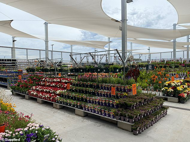 Ryan's plot involved the use of old receipts and walking out of the store via the Bunnings garden centre exit - but they did get caught, with Ryan jailed for five years