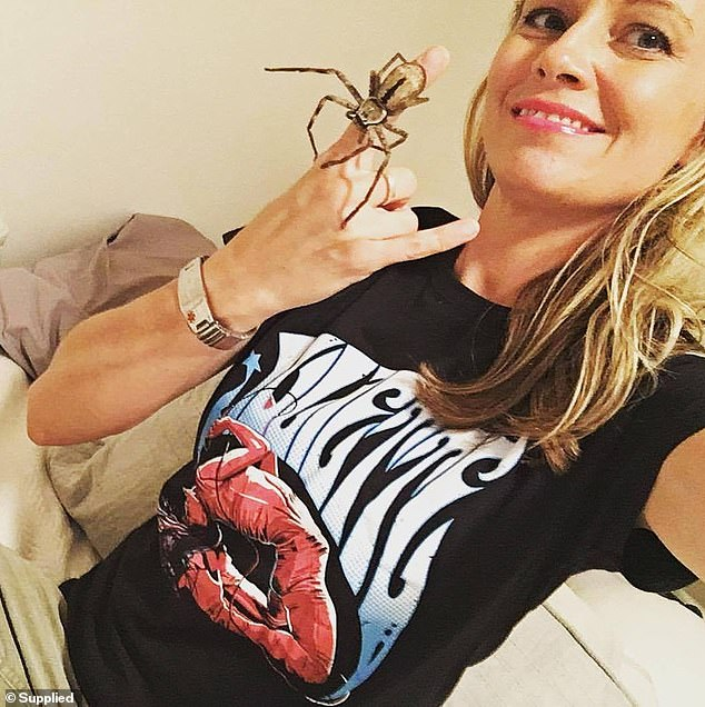 Sophia's 'human mum' Lisa Donovan (pictured) with another Huntsman in her Queensland home