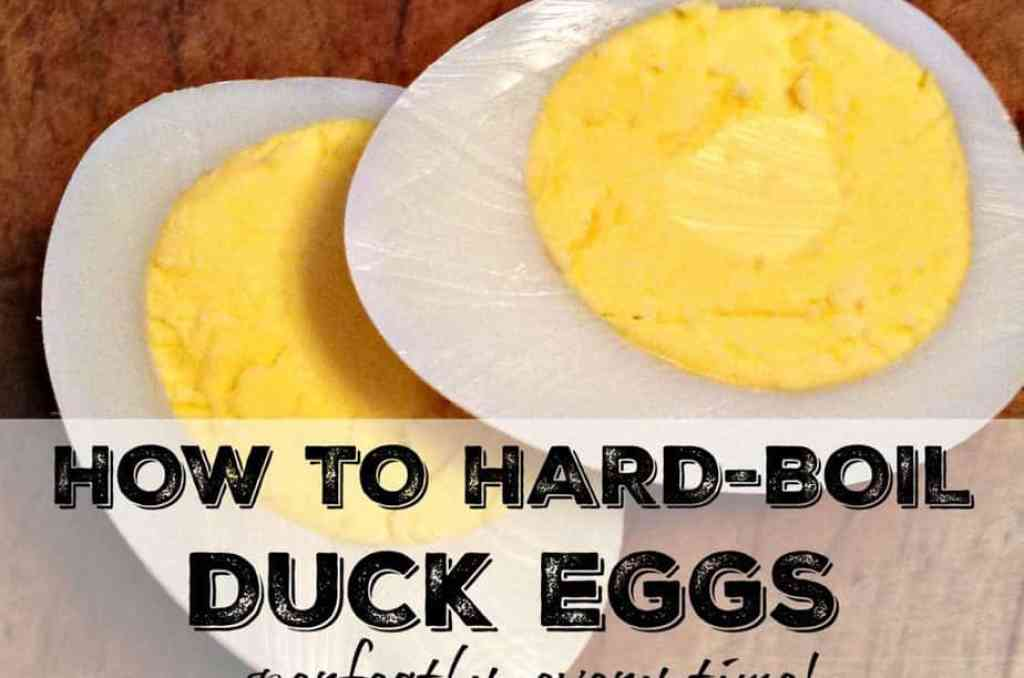 How long do you boil duck eggs for hard boiled howsto co for How long do you boil hard boiled eggs