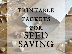 printable packets for seed saving