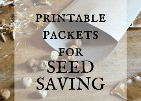 Printable Seed Packet Template