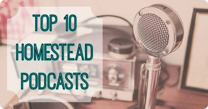 best homesteading podcasts