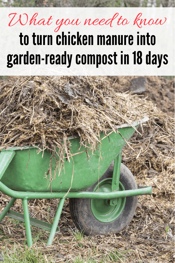 Composting chicken manure in 18 days