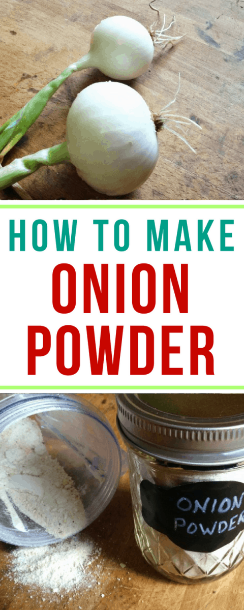 Super easy DIY for how to make onion powder at home!