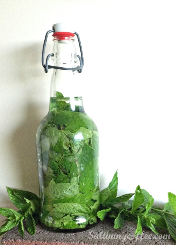 make your own mint extract
