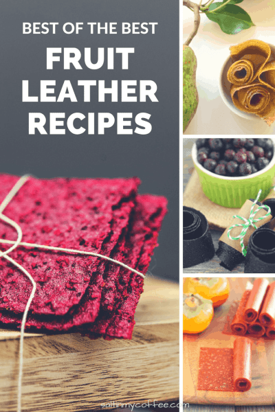 best fruit leather recipes