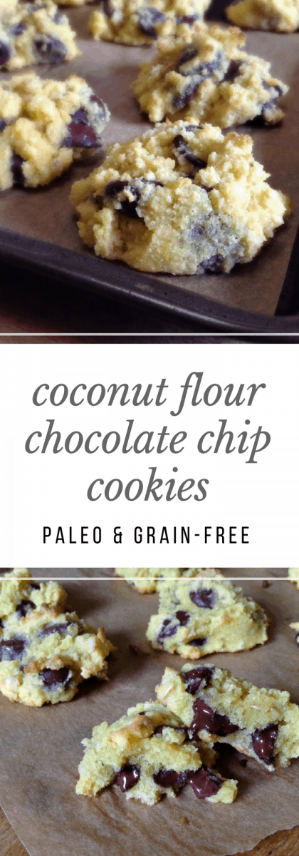BEST coconut flour cookies I've ever had! Absolutely perfect, decadent chocolate chip cookies - made with coconut flour! Paleo & Gluten Free.