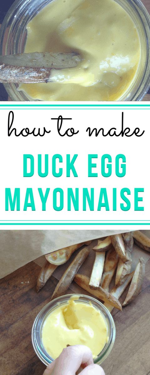 duck egg mayonnaise recipe
