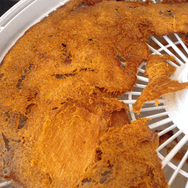 drying pumpkin puree in a dehydrator for pumpkin powder