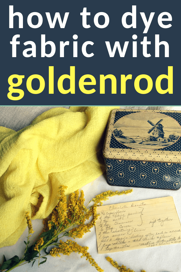 dyeing with goldenrod