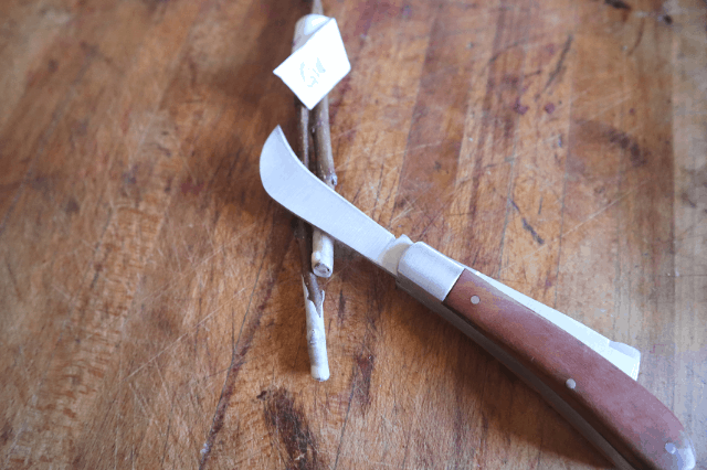 grafting knife with root stock