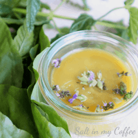 plantain and peppermint salve