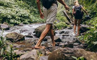 Forest Bathing for Good Health
