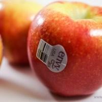 The Envy Apple