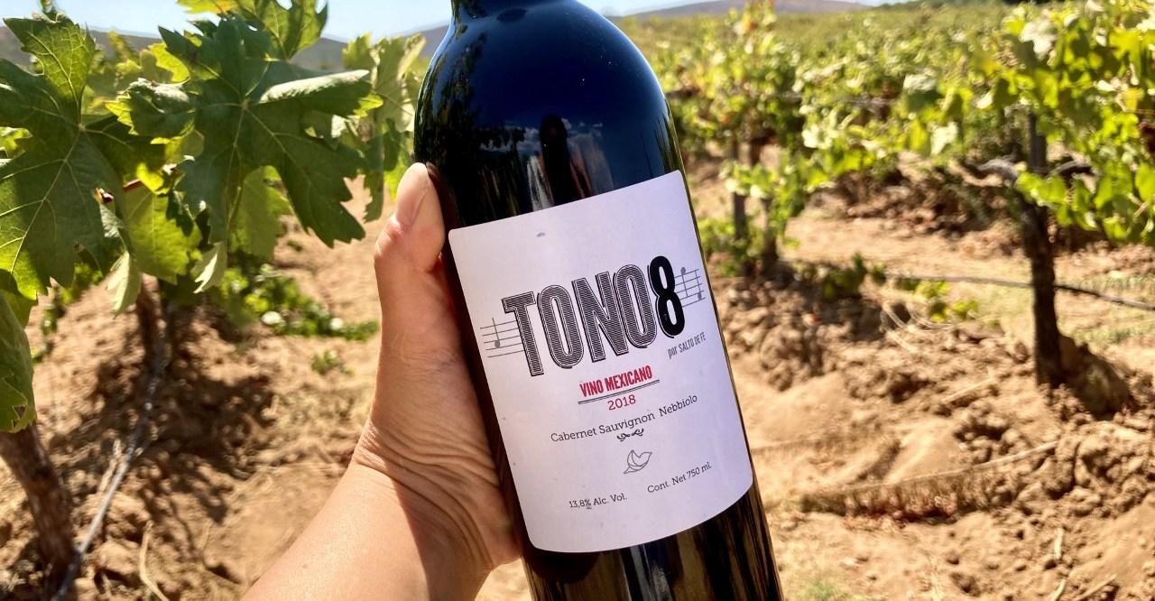 TONO 8 ¿A qué sabe la música en el vino?