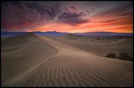 desert4