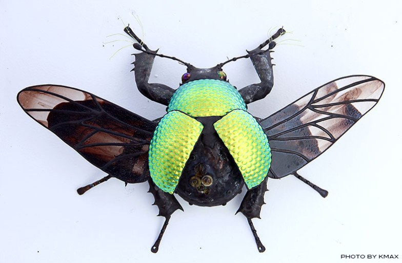 insect_MG_1893