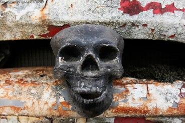 bumper-skull_MG_2749