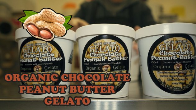 ORGANIC-CHOCOLATE-PEANUT-BUTTER-GELATO-FLAVOUR-THUMBNAIL
