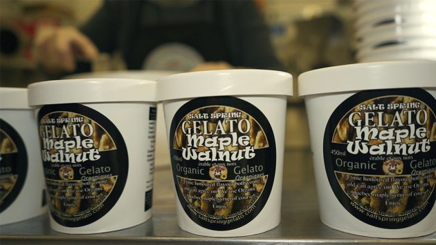 ORGANIC-MAPLE-WALNUT-GELATO-PINTS-FACTORY