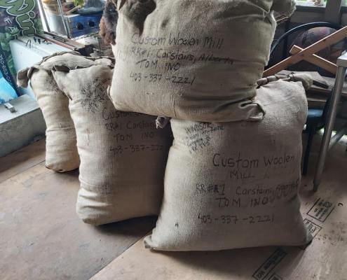Raw wool bagged and ready to shipment to mills