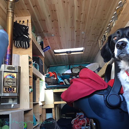 Van Life travel with baby and dog