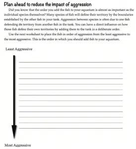 Reef Journal Screenshot 2