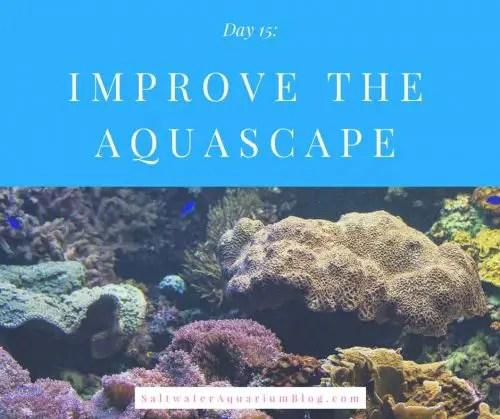 improve the aquascape
