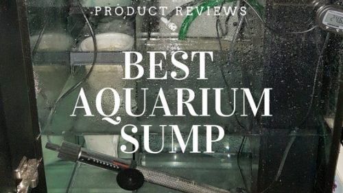 Best aquarium sump a product review article including aquarium sump refugium