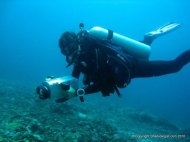 Bringing the video camera back to the surface, Monad Shoal, Philippines