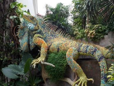 Green lizard, Guayaquil