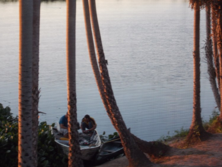 Catching fish in the Pantanal