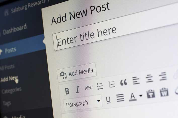 Wordpress article