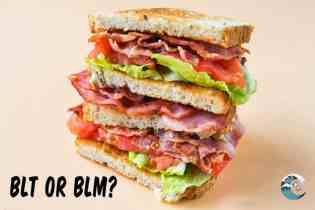 BLT or BLM? The real discrimination exposed!
