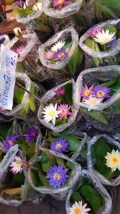 lotus-for-sale-at-lum-phaya-floating-market