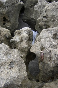 blowing rocks formations
