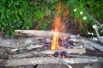 The beginning of our fire
