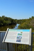 ELC nature trail (1)