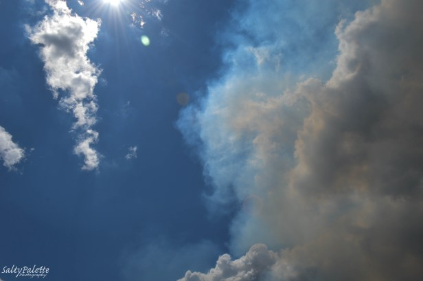 smoke plume (2)