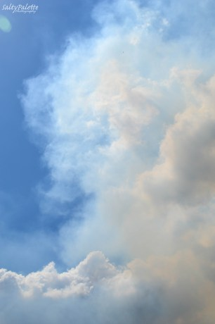 smoke plume (5)