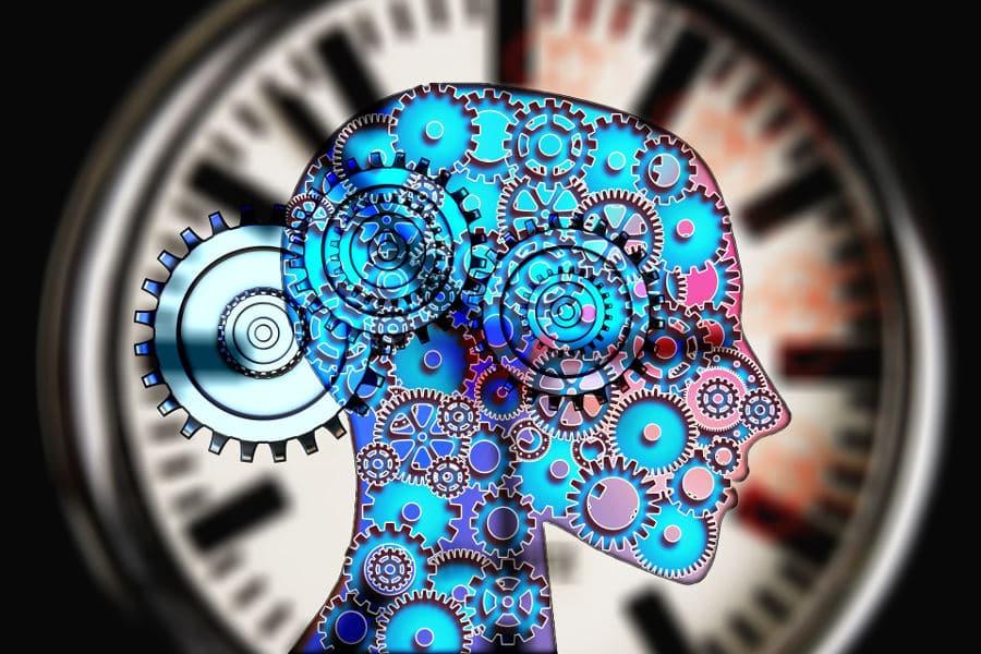 mecanismo cerebrales bienestar emocional
